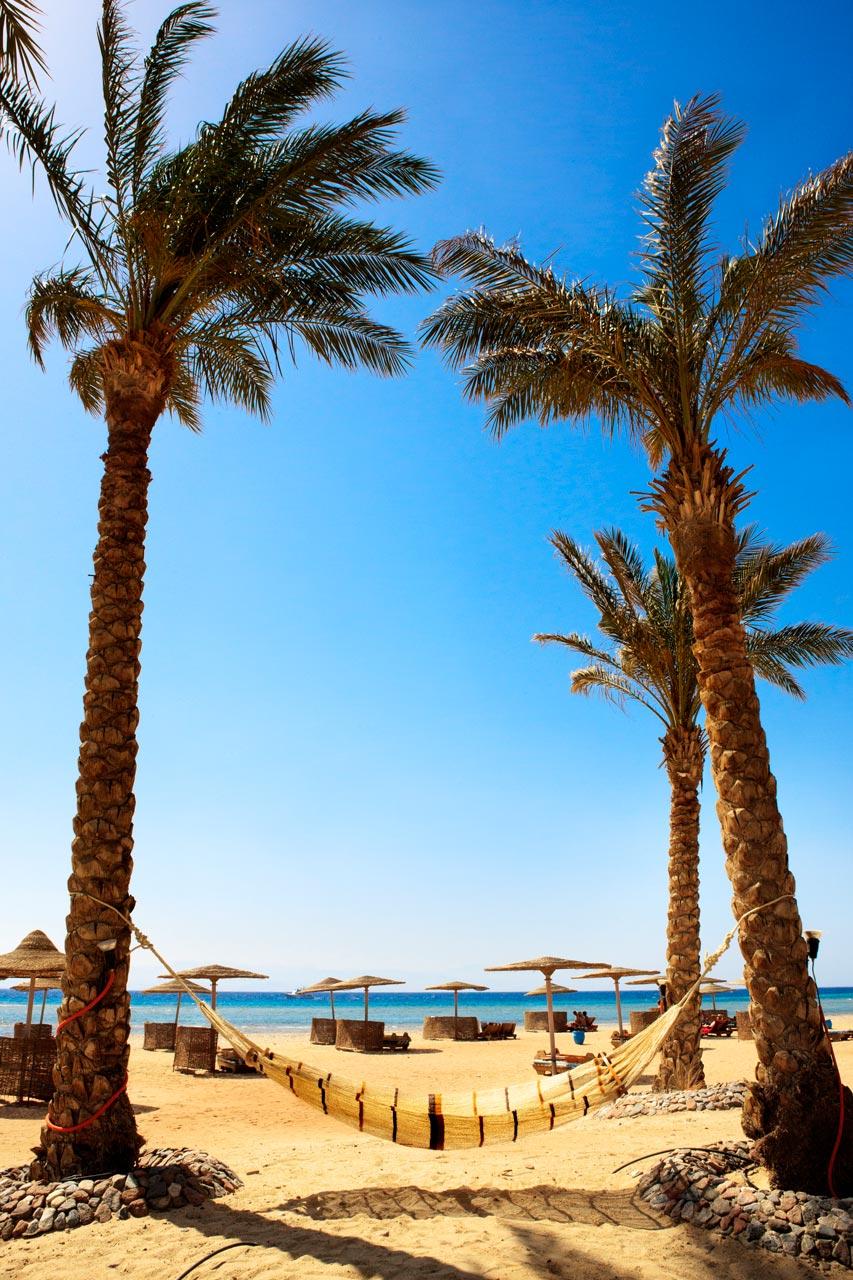 Plame, strand, ferie, blaa, himmel, egypten, atlantis, rejser